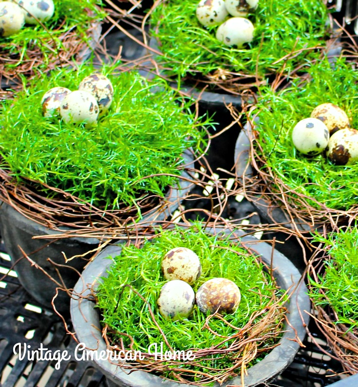 Birdsnests with moss and eggs for spring decorating from Vintage American Home