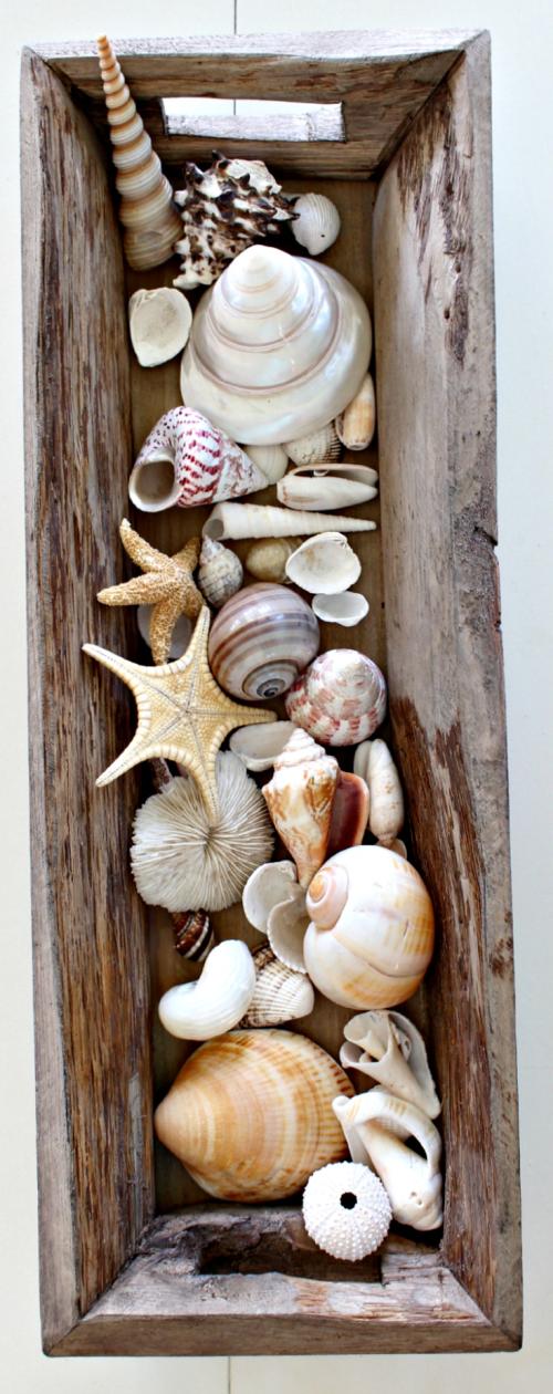 Seashells in Wooden Trough Coastal centerpiece