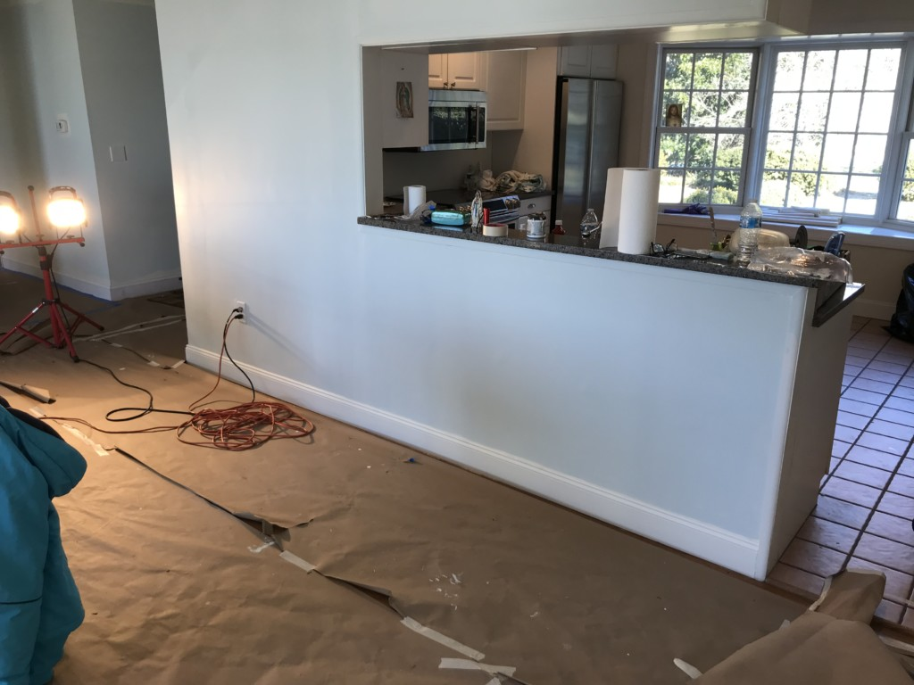 Transforming a kitchen using the online cabinets from Costco